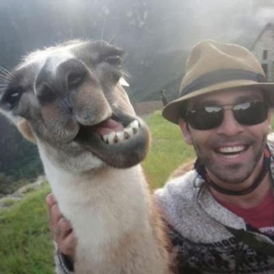 funny-mule-selfie