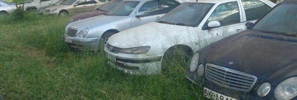 rotting-cars-at-the-judiciary